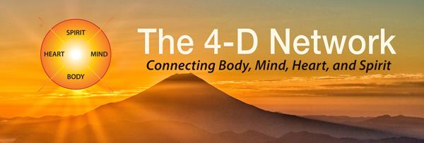 4D Network Logo
