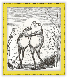 happy-frogs